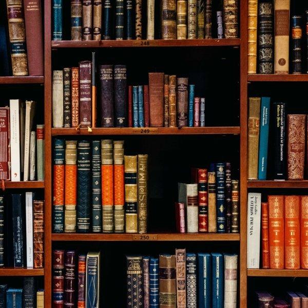 Big Five for Life von John Strelecky ist Tiados Buchempfehlung.