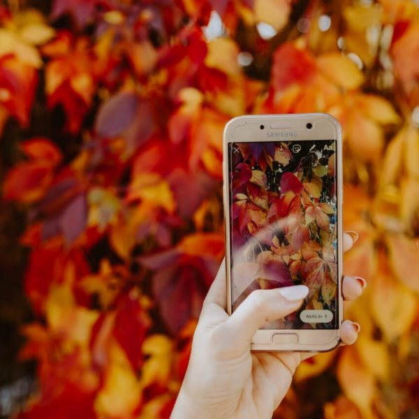Herbstliche Ideen für Redaktionsplan im Oktober
